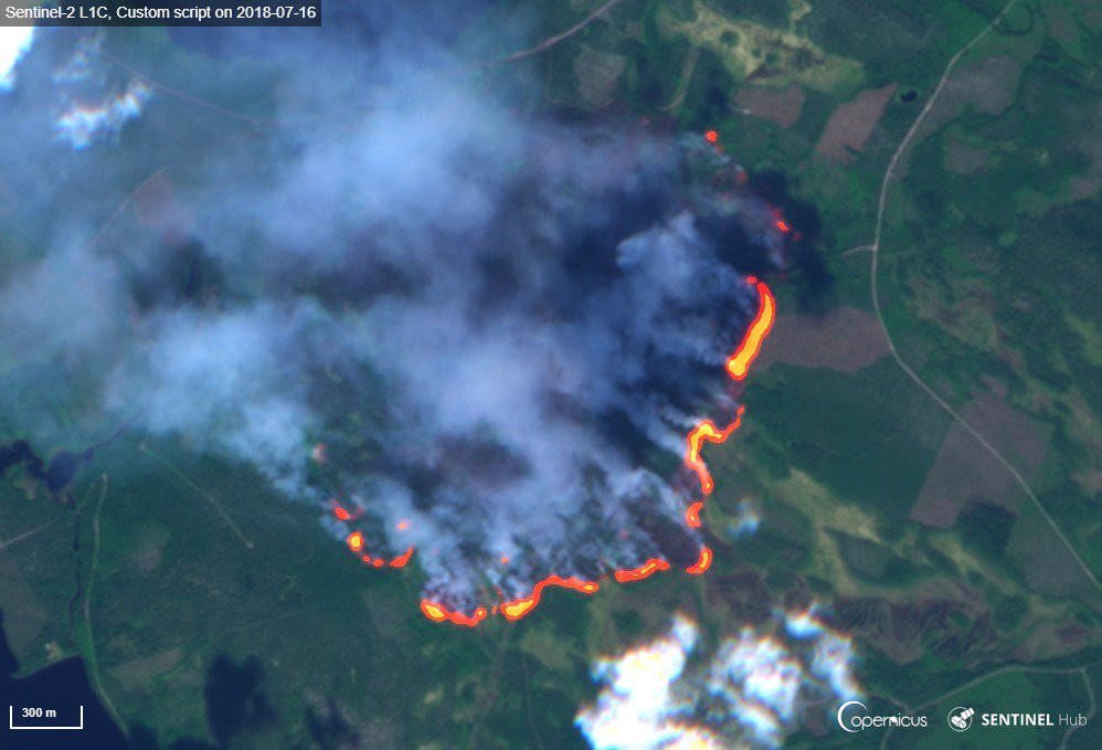 "The ""new normal"" - a large number of a forest fires in winter. By early March 2019, the European Forest Fire Information System reported that the number of fires in Europe reached a level usually recorded in August. Above: Forest fire in Hammarstrand (Image: European Union. Contains Sentinel data 2018, processed by the Copernicus Support Office)"