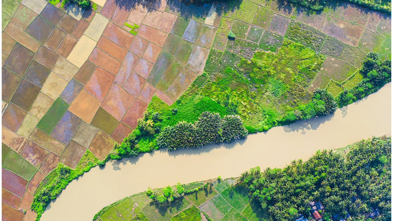Aerial photograph of crop lands and river, Indonesia.