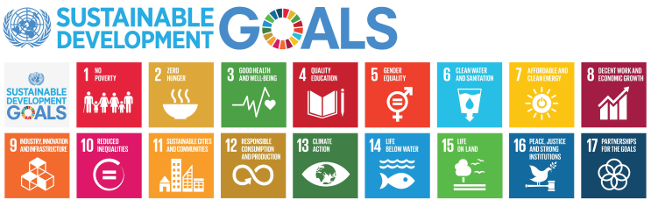 Global Goals, local action
